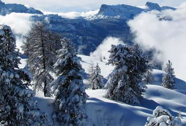 school skiing trips to switzerland